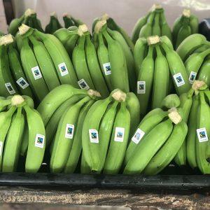 Banafrucoop-banano-certificado-02.jpg